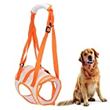 Pssopp Arnés de elevación para Perros Ajustable Transpirable Soporte para piernas traseras para Perros Chaleco de rehabilitación para Mascotas para Ancianos discapacitados(XL)