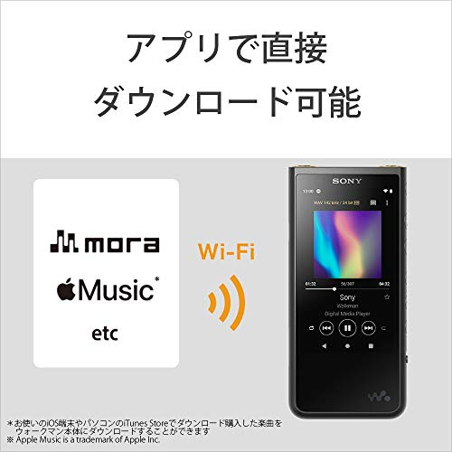 SONY『ウォークマンZXシリーズ(NW-ZX507)』