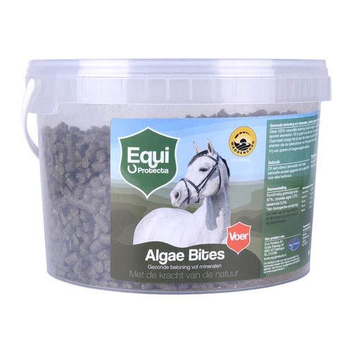 Equi Protecta Algae Bites - 250 g