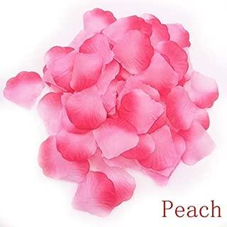 Best bordas de flores Reviews