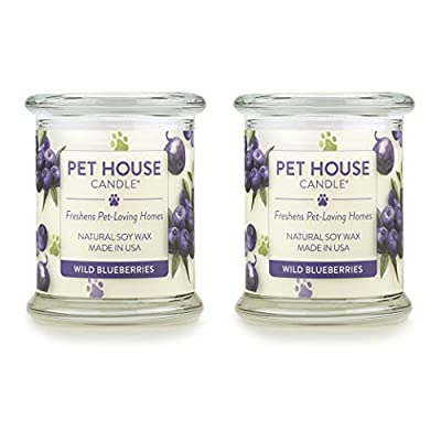 One Fur All 100% Natural Soy Wax Candle, 20 Fragrances - Pet Odor Eliminator, Up to 60 Hours Burn Time, Non-Toxic, Eco-Friendly (Pack of 2, Wild Blueberries)