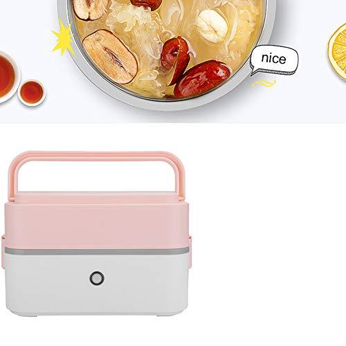 Multifunctionele elektrische lunchbox, draagbare elektrische verwarming lunchbox Voedselverwarming Warmer Stomen Kookmachine voor thuis en op kantoor Gebruik warme lunchbox(110V US 2 Layer)