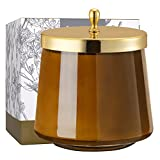 La Jolíe Muse Vela aromatica - Vela perfumada de ámbar Picante, Tarro de Cristal Ovalado, Regalos para casa, 65-75 Horas, 350g