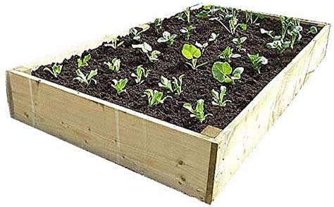 Raised beds from our Premier, thicker timber range. These beds are 6 inches...