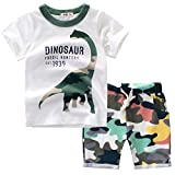 Frogwill Toddler Boys Dinosaur Camouflage Tee and Shorts Set 2-7Y (2T, D2)
