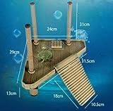 Nomo - Piattaforma galleggiante per rettilario e vasca tartarughe, dimensioni medie, per crogiolarsi al sole