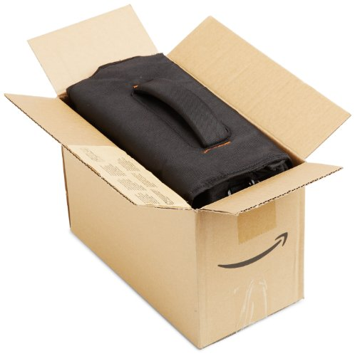 Amazonベーシックカメラバッグデジタル一眼レフ用Mサイズブラック(内装色グレー)