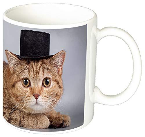 MasTazas Gatitos Gatos Kittens Cats C Tasse Mug