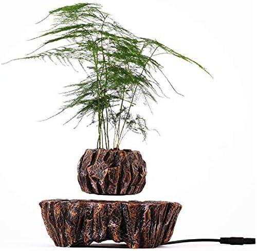 Glodqy Schwebende Magnetischer Pflanze Interaktiver Dekoration Geschenk,Modell M005B-PW