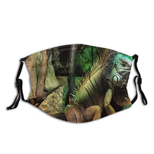 Gesichtsbedeckung,Gesichtsschutzhülle,Gesichtsdekoration,Mundschild,Green Iguana Large Arboreal Meist Pflanzenfressende Arten Von Lizard Unisex Mehrwegs Winddichtes Anti-Staub-Gesichtstuch