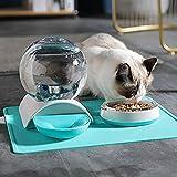 crocchette per gatti renal