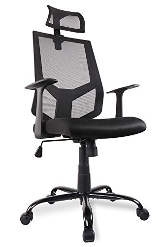 High Back Ergonomic Office Chair Mesh Desk Chair with Adjustable Headrest/Neck Support