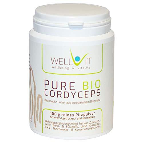 Pure Bio Cordyceps sinensis 100 g di polvere vitale di funghi da agricoltura biologica dell'UE, vegana, senza additivi artificiali