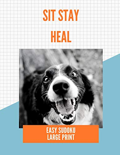 Sit Stay Heal: 100 Easy Puzzles ~ In Large Print ~ Get Well Soon Theme