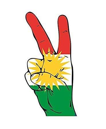 UB Aufkleber Kurdistan Peace Finger 13 cm x 6 cm Flagge/Fahne (Autoaufkleber)