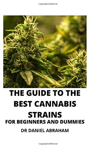 THE GUIDE TO THE BEST CANNABIS STRAIN FOR BEGINNERS AND DUMMIES