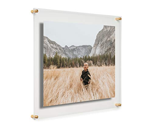 Cool Modern Frames Clear Floating Double Panel Acrylic Picture Frame, 16x20-Inch, Gold Hardware