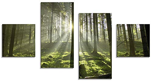 Artland Glasbilder Wandbild Glas Bild 4 teilig 120x70 cm Querformat Natur Wald Landschaft Sonne Bäume Moos Frühling Landhaus T5SV