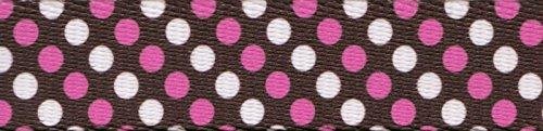 Country Brook Design 1 Inch Shibuya Polyester Webbing, 5 Yards