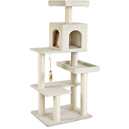 Petco Brand - You & Me 5-Level Cat Tree, 54' H, 21.5 IN