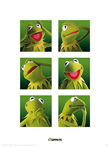 1art1 Muppets - Kermit Galerie Poster Kunstdruck 40 x 30 cm