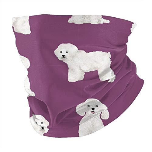 Xinflag@10 Bichon Frise - Pañuelo para la cara del perro con protección UV para el cuello, pasamontañas variadas (unisex), color blanco, talla única