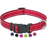 Amazon Brand - Umi - Collar de Perro, Reflectante, Ajustable, Nylon, para Perros pequeños y Grandes, Cachorros y Gatos, en Muchos Colores y Tallas Distintos, Rojo, S