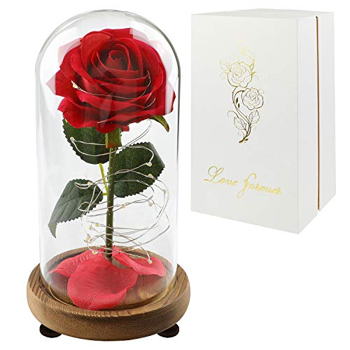 Childom Rose in a Glass Dome, Roses Enchanted Red Silk Rose with Fallen Petals Led Fairy String...
