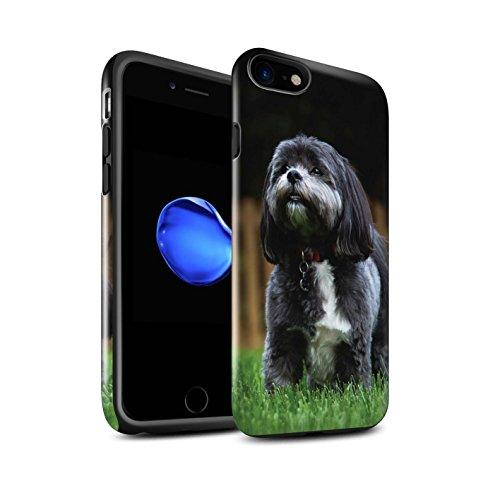 Stuff4 telefoonhoesje/Cover/Skin/IP-3DTBG / Populaire collectie honden/hondenrassen Apple iPhone SE 2020 Shih Tzu