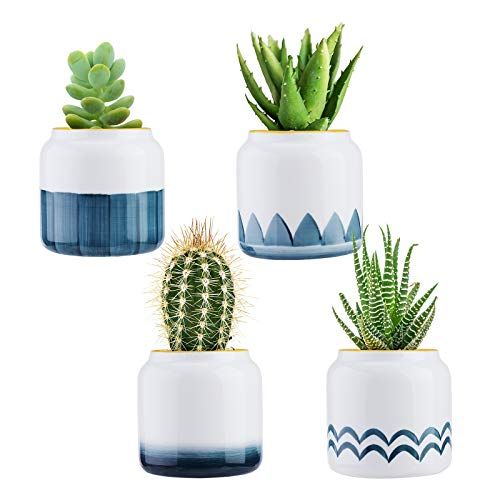 Wisolt Vasi Piccoli per Piante Grasse, 4 Pezzi Vaso per Piante Grasse Piccole in Ceramica, Vasetti Piante Grasse, Mini Vasi Cactus per Casa Giardino Balcone