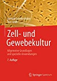 Zell- und Gewebekultur: Allgemeine Grundlagen und spezielle Anwendungen - Gerhard Gstraunthaler