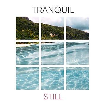 # Tranquil Still