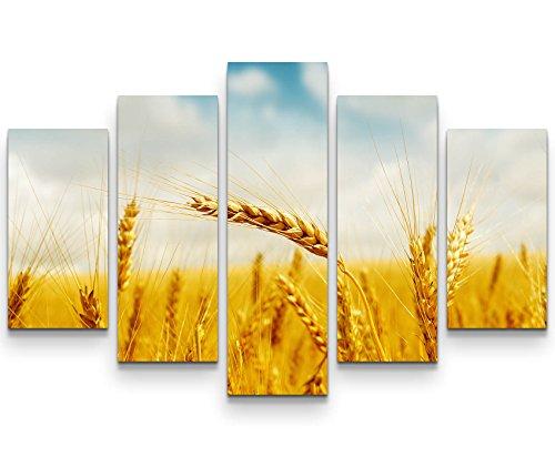 Paul Sinus Art Leinwandbilder | Bilder Leinwand 160x100cm Goldene Ähren Unter Blauem Himmel