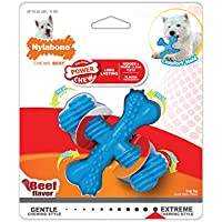 Nylabone X-Shaped Dog Bone Chew Toy