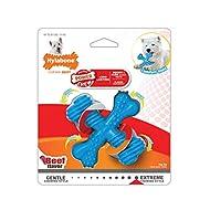 Nylabone Power Chew Extreme Chewing Comfort Hold X Bone Power Chew Durable Dog Toy Beef Regular, Blue
