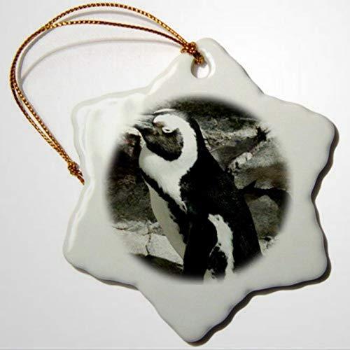 BYRON HOYLE Fotos-Boston-Aquarium-Ornamente mit großem Pinguin, der am Boston schläft, Schneeflocken-Ornament, Pandemie, Weihnachtsdekoration, Hochzeitsdekoration, Urlaubsgeschenk