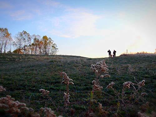 Trail Cameras Part 1