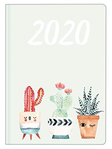 Idena 11448 Nature Cactus - Mini agenda 2020, A6, 1 unidad
