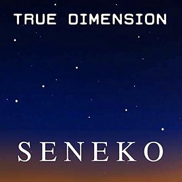 True Dimension - EP