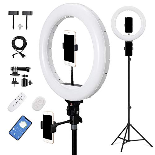 E EyeGrab 14'' Studio Selfie Ring Light with 94'' Tripod Stand, 10'' Ringlight & 4 Glue Dots for Gift, 7000K Color Temperature Lighting for TikTok Portrait Photo Video, Camera Phone Laptop, White