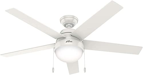 discount Hunter lowest Anslee Indoor online sale Ceiling Fan with LED Light and Pull Chain Control sale