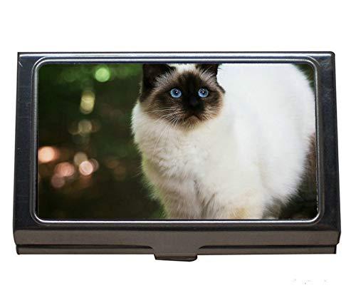 Estuche para tarjetas de presentación con nombre de gato del Himalaya para animales y mujeres.: Amazon.es: Oficina y papelería