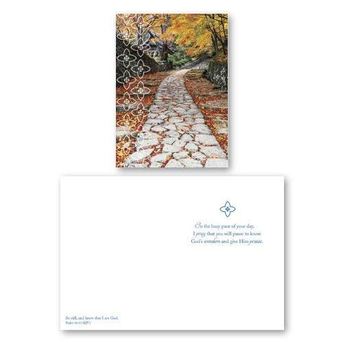 12 Pack Boxed Set of Encouragement Cards, Bulk with KJV Scripture – Tree, Path Greeting Cards for Her for Him