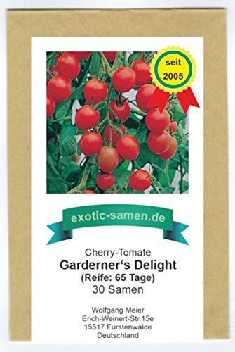Gardener's Delight - frühe, rote Cherry-Tomate - sehr süß - mehrfacher Preisgewinner - 30 Samen
