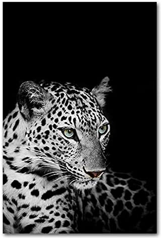HETHYAN Elephant Zebra Giraffe Tiger SEAL limited product Max 61% OFF Wall Art Lion Anima Posters