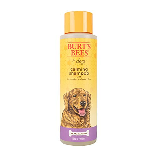 Burt's Bees for Pets for Dogs Natural Calming Shampoo with Lavender and Green Tea | Puppy and Dog Shampoo, 16 Ounces (FF4923)