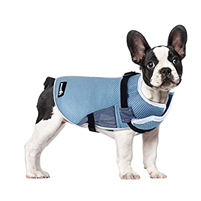 Pecute Dog Cooling Coats Medium, Summer Cool Vest- Lightweight Dog Cooling Jacket for Dogs(M, Blue)