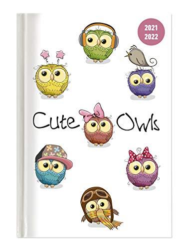 Collegetimer Cute Owls 2021/2022 - Schüler-Kalender A5 (15x21 cm) - Eule - Day By Day - 352 Seiten - Terminplaner - Notizbuch - Alpha Edition (Collegetimer A5 Daily)