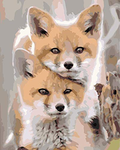 DIY Pintura digital Adulto Pintura digital adulta Fuzzy Animal Fox Pintura digital para niños adultos por kit digital Pintura de pintura y pintura acrílica WANGHN