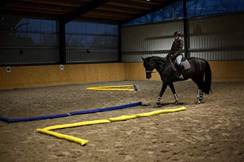 Longier-Hilfe für Pferde, blau & gelb, 4 Stk., 2,8m lang, Pferdeausbildung, Richtläufer, Bodenarbeitshindernis, Hindernis-Stangen - 7